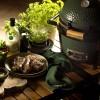 Керамический гриль Big Green Egg Mini MAX - 119650 фото_8