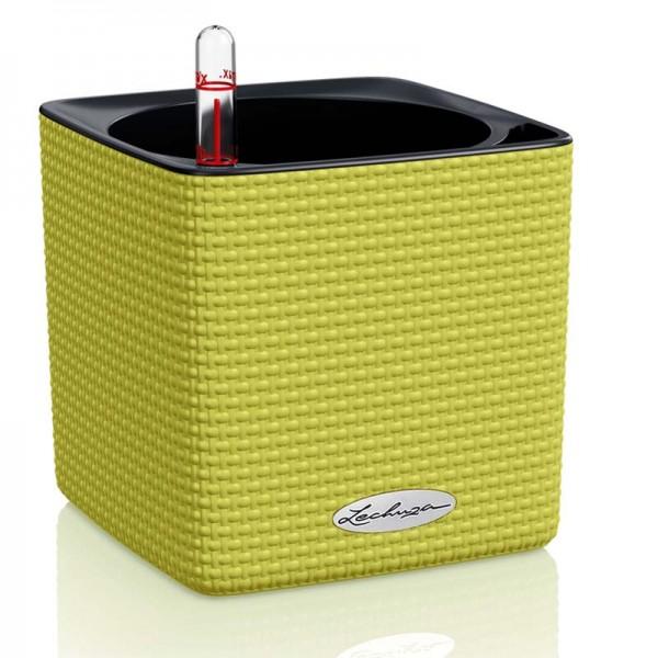 Купить CUBE Color 14 зеленый лайм - 13385 в магазине Grill Point