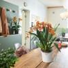 ORCHIDEA белый матовый - 13960 фото_5