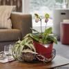ORCHIDEA ярко-красный матовый - 13962 фото_4
