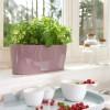 DELTA 10 Фиолетово-пастельный блестящий - 15465 фото_5