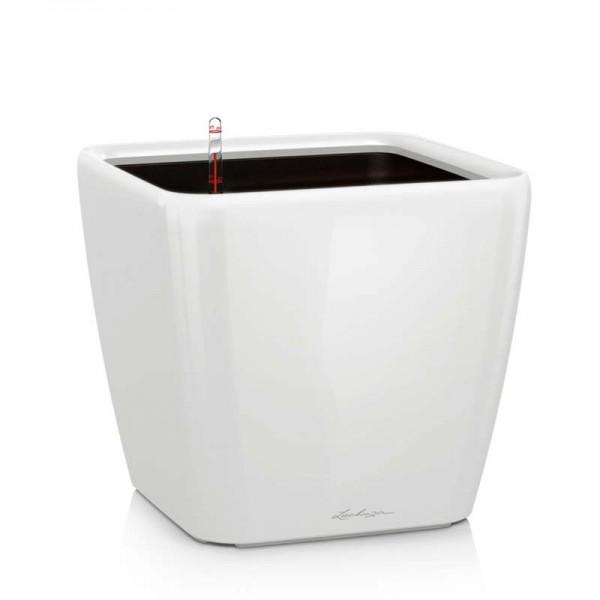 Купить QUADRO LS 21 Белый блестящий - 16120 в магазине Grill Point