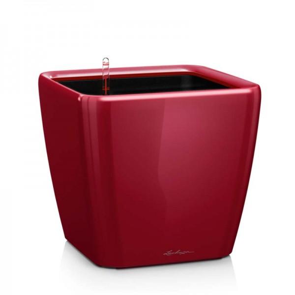 Купить QUADRO LS 28 Ярко-красный блестящий - 16147 в магазине Grill Point