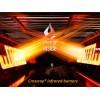 Встраиваемый инфракрасный газовый гриль CROSSRAY® 4 by Heatstrip - TCS4EU30 фото_4